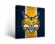 Quinnipiac Bobcats Vintage Canvas Wall Art