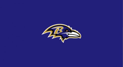Baltimore Ravens NFL Team Logo Billiard Cloth