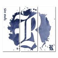 Rice Owls Triptych Watercolor Canvas Wall Art