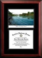 Sacramento State Hornets Diplomate Diploma Frame