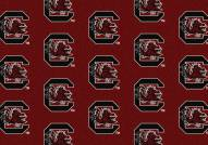 South Carolina Gamecocks College Repeat Area Rug