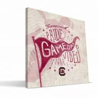 South Carolina Gamecocks Gameday Vibes Canvas Print