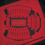 South Carolina Gamecocks Williams-Brice Stadium Print