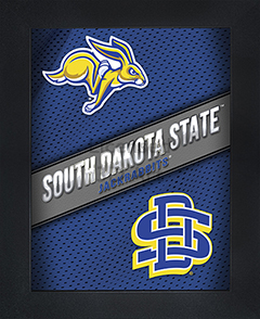 South Dakota State Jackrabbits Framed 3D Wall Art