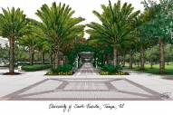 South Florida Bulls Campus Images Lithograph