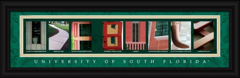 South Florida Bulls Campus Letter Art