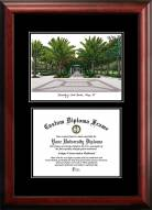 South Florida Bulls Diplomate Diploma Frame