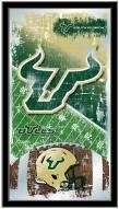South Florida Bulls Football Mirror