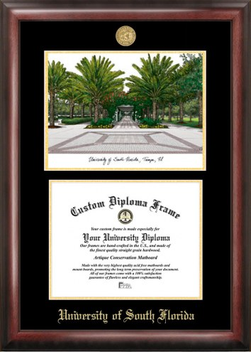 South Florida Bulls Gold Embossed Diploma Frame with Lithograph