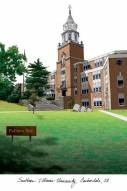 Southern Illinois Salukis Campus Images Lithograph