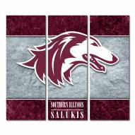 Southern Illinois Salukis Triptych Double Border Canvas Wall Art