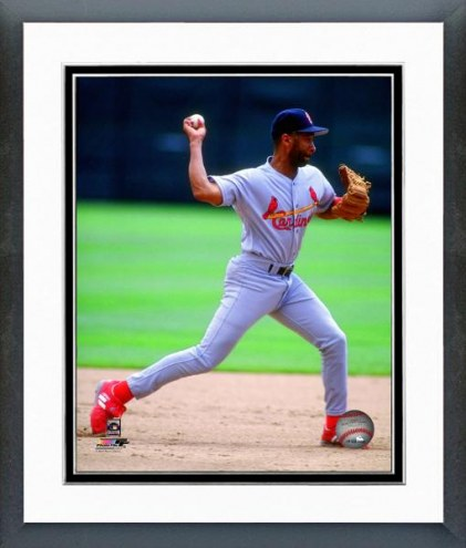 St. Louis Cardinals Ozzie Smith 1993 Action Framed Photo