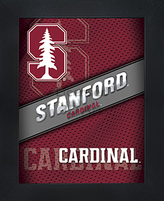 Stanford Cardinal Framed 3D Wall Art