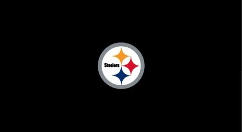 Pittsburgh Steelers NFL Team Logo Billiard Cloth