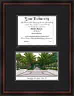 University of South Florida Diplomate Framed Lithograph with Diploma Opening