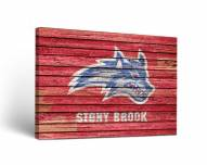 Stony Brook Seawolves Weathered Canvas Wall Art
