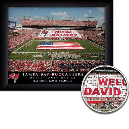 Tampa Bay Buccaneers 11 x 14 Personalized Framed Stadium Print