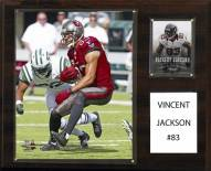 """Tampa Bay Buccaneers Vincent Jackson 12"""" x 15"""" Player Plaque"""