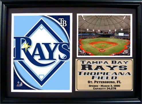 "Tampa Bay Rays 12"" x 18"" Photo Stat Frame"