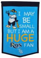 Tampa Bay Rays Lil Fan Traditions Banner