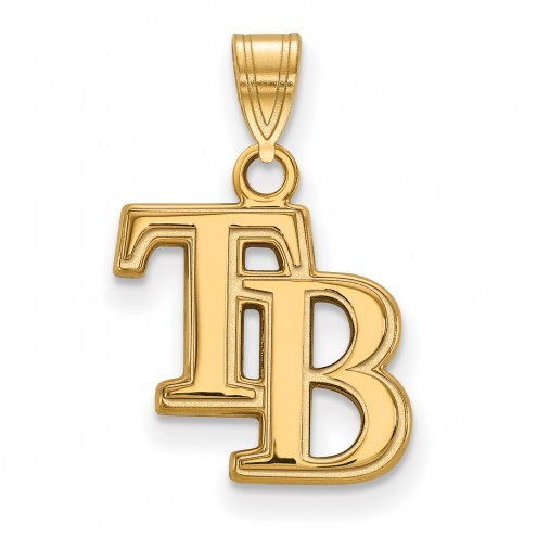 Tampa Bay Rays Logo Art Sterling Silver Gold Plated Small Pendant