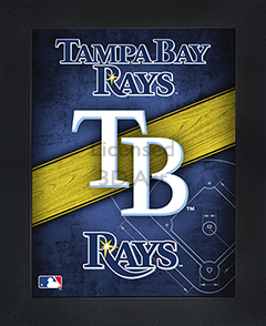 Tampa Bay Rays Framed 3D Wall Art