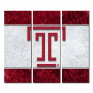 Temple Owls Triptych Double Border Canvas Wall Art