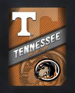 Tennessee Volunteers Framed 3D Wall Art