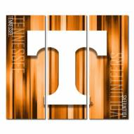Tennessee Volunteers Triptych Rush Canvas Wall Art
