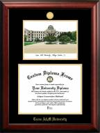 Texas A&M Aggies Gold Embossed Diploma Frame with Campus Images Lithograph