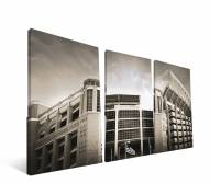 "Texas Longhorns 24"" x 48"" Stadium Canvas Print"