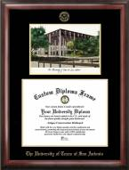 Texas San Antonio Roadrunners Gold Embossed Diploma Frame with Campus Images Lithograph