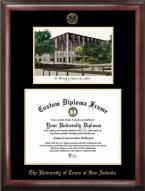 Texas San Antonio Roadrunners Gold Embossed Diploma Frame with Lithograph