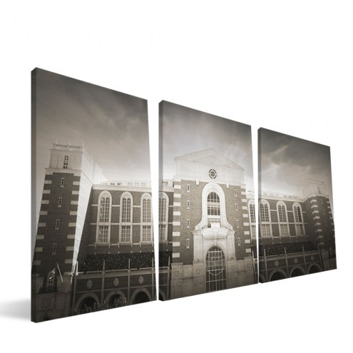 "Texas Tech Red Raiders 24"" x 48"" Stadium Canvas Print"