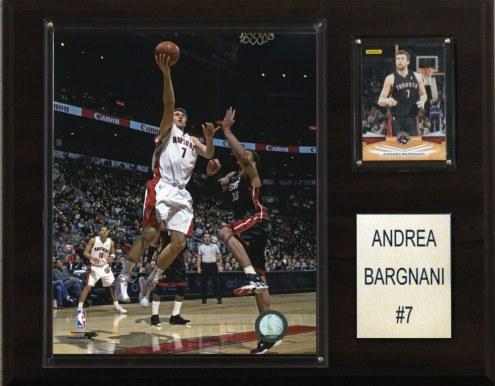 "Toronto Raptors Andrea Bargnani 12"" x 15"" Player Plaque"