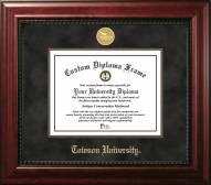 Towson Tigers Executive Diploma Frame
