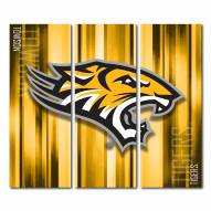 Towson Tigers Triptych Rush Canvas Wall Art
