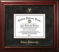 Tulane Green Wave Executive Diploma Frame