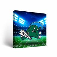 Tulane Green Wave Stadium Canvas Wall Art