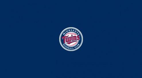 Minnesota Twins MLB Team Logo Billiard Cloth