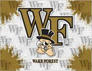 Wake Forest Demon Deacons Logo Canvas Print