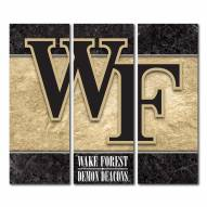 Wake Forest Demon Deacons Triptych Double Border Canvas Wall Art