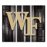 Wake Forest Demon Deacons Triptych Rush Canvas Wall Art