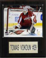 "Washington Capitals Tomas Vokoun 12"" x 15"" Player Plaque"