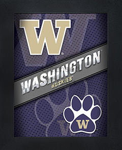 Washington Huskies Framed 3D Wall Art