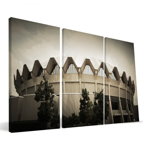 "West Virginia Mountaineers 24"" x 48"" Stadium Canvas Print"