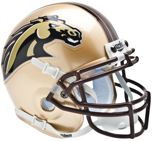 Western Michigan Broncos Schutt Mini Football Helmet