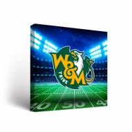 William & Mary Tribe Stadium Canvas Wall Art