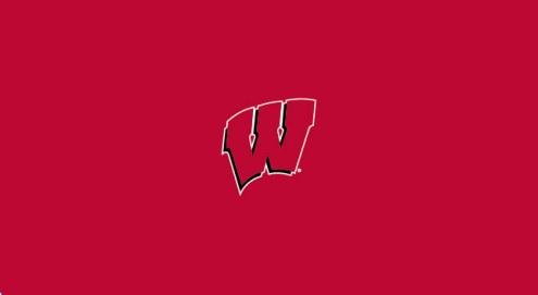 Wisconsin Badgers NCAA Pool Table Cloth