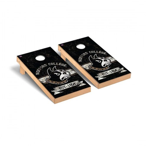 Wofford Terriers Banner Vintage Cornhole Game Set